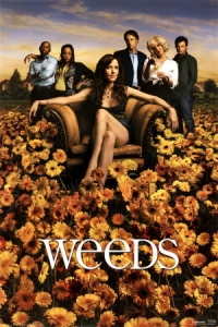 Weeds